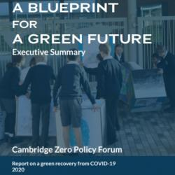 Launch - Green Recovery: A Blueprint for a Green Future