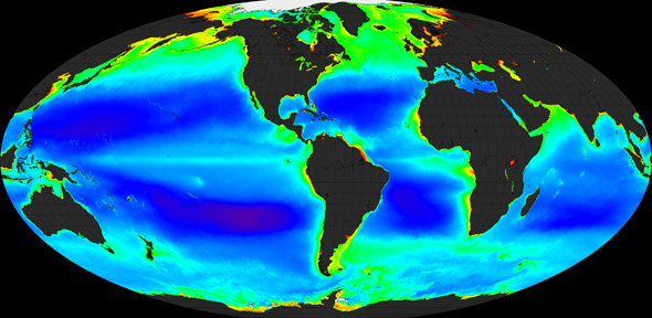 Bacteria in the world's oceans produce millions of tonnes of hydrocarbons each year